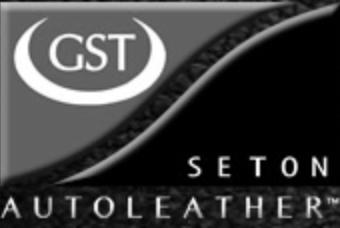 gst_Seton_logo